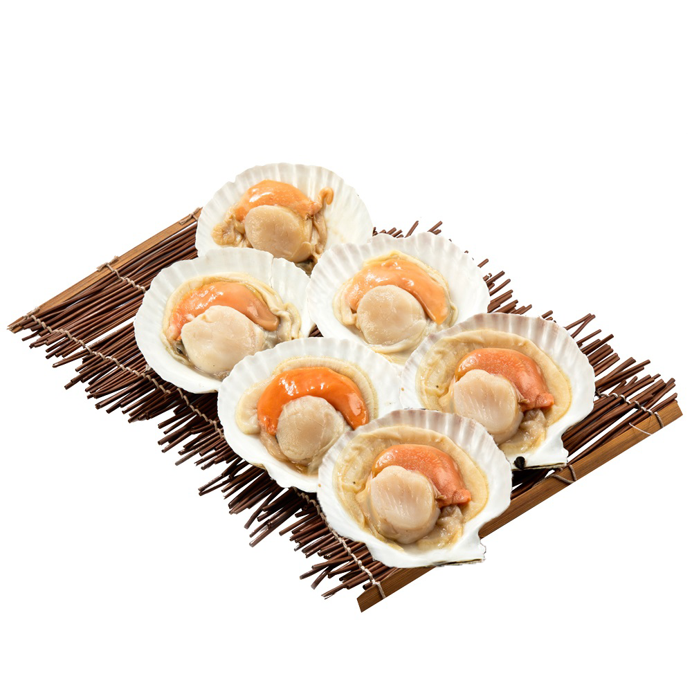 Half Shell Scallop 9-10cm (Approx 6pcs)